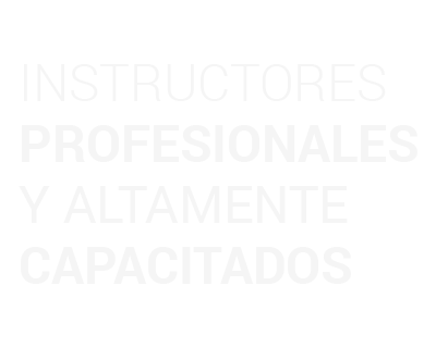 instructores_profesionales